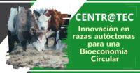 CENTR@TEC : Innovación en Razas Autóctonas